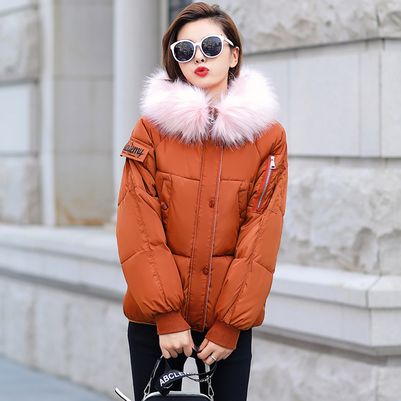 Brieuces Winter Jacket Women 2018 New Fashion Female Winter Coat Thicken   Parka   Down Cotton Clothing Fur Hooded Plus Size 4XL
