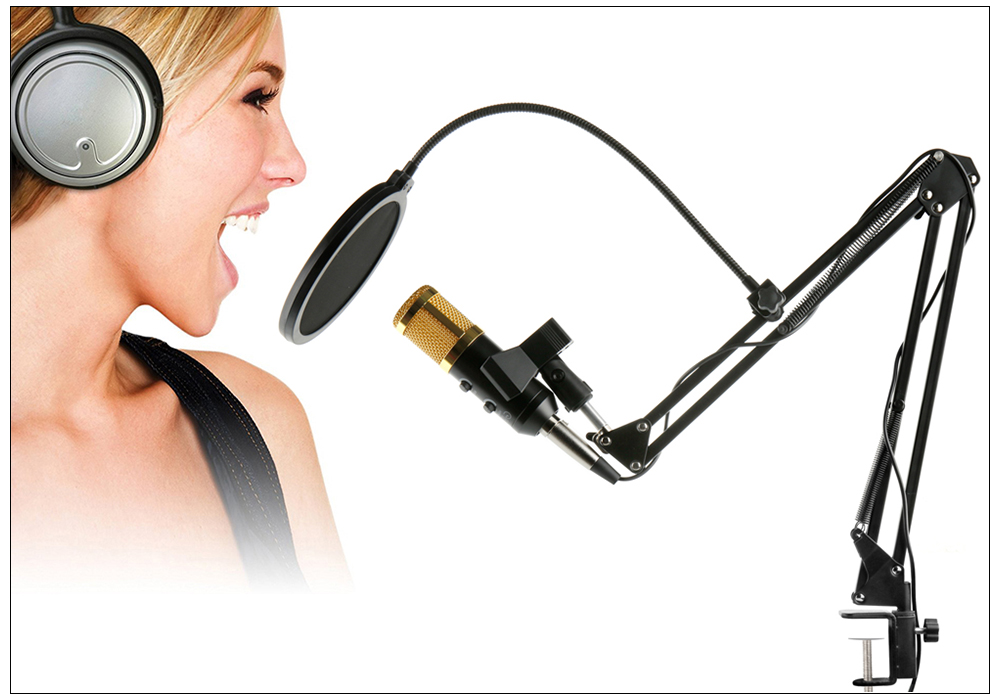 BM 900 USB Microphone 9
