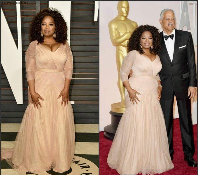 Oprah Winfrey Oscar Celebrity Dresses plus size v neck sheath chiffon with long sleeves mother of bride groom dresses BO9521 144 (8)