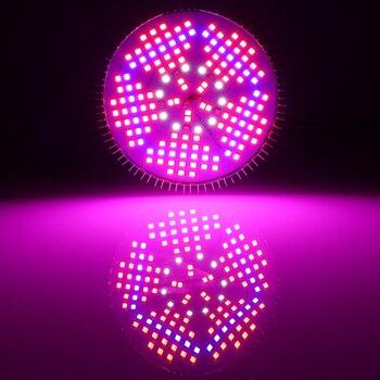 E27 100W pełnozakresowe LED roślin oświetlenie do uprawy dla kryty ogród cieplarnianych roślin rosnących i kwitnących ------ ograniczony czas oferta