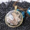 Concha Collar de Conchas Collar de estrellas de Mar de la playa Larga Sección Océano Collar Colgante de Cristal de Estilo de La Moda Europea y Americana