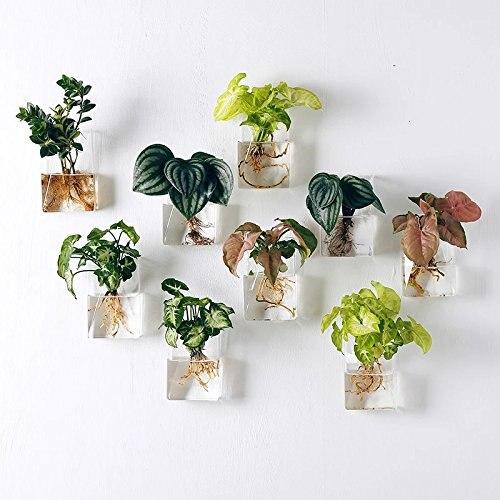 Набор из 4 настенных Висячие клумбы Висячие стеклянные террариумы настенные растения Висячие цветочные горшки воздушные растения горшки