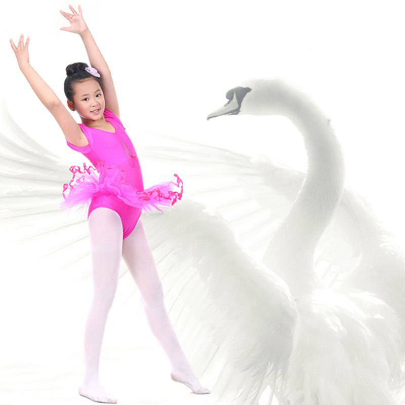 zehui-style-3-7y-crianca-meninas-traning-ginastica-font-b-ballet-b-font-tutu-collant-de-manga-curta-vestido-da-danca