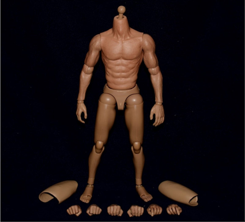 ZC Toys 1//6 Scale 12inch Narrow Shoulder Muscular Figure Body s005 Asian Color