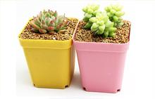 2/5/10set/lot Garden Stuff Mini Plastic Flower Pots+Plastic Tray Vase Square