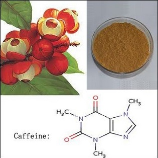 Hot sale GMP Factory supply 1KG (35.27oz) Guarana Extract Powder 10% caffeine improve Energy And Stamina Free shipping factory supply hair loss prostate health 55% fatty acid and sterols saw palmetto extract powder 1000grams free shipping