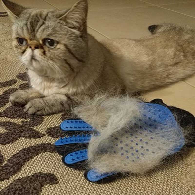 Pet Dog Hair Brush Comb Glove For Pet Cleaning Massage Grooming Supply Glove For Animal Finger Cleaning Cat Hair Glove #2