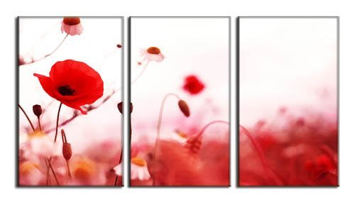 3 Pcs Set Artist Canvas Beautiful red flowers Still Life painting Canvas Prints Wall Pictures for Living Room Picture XJ 115 in Painting Calligraphy from Home Garden