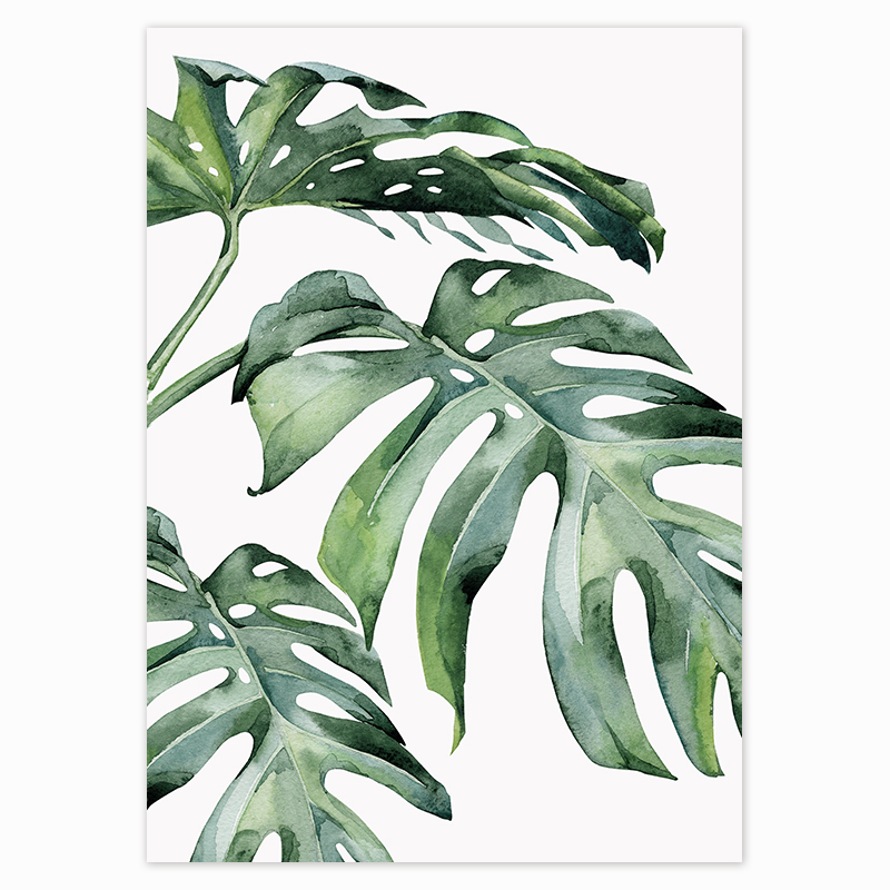 HTB1ommYdoGF3KVjSZFoq6zmpFXaY Scandinavian Style Tropical Plants Poster Green Leaves Decorative Picture Modern Wall Art Paintings for Living Room Home Decor