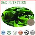 Низкая цена хорошее качество натуральных сухих органических водоросли ламинарии порошок для продажи 900 г