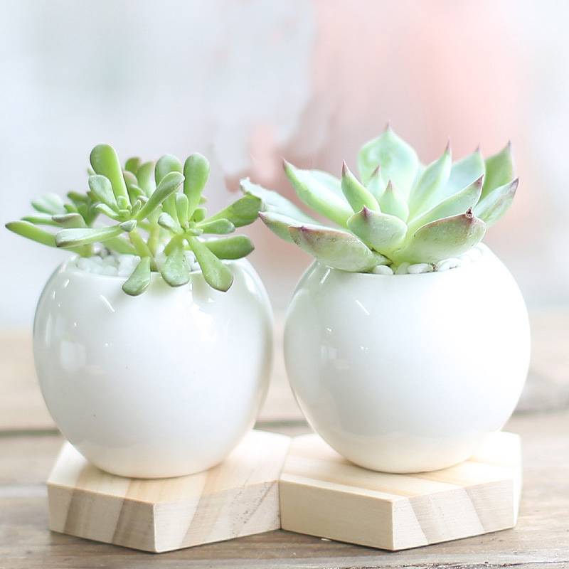 High Quality Wholesale White Ceramic Plant Pots From China