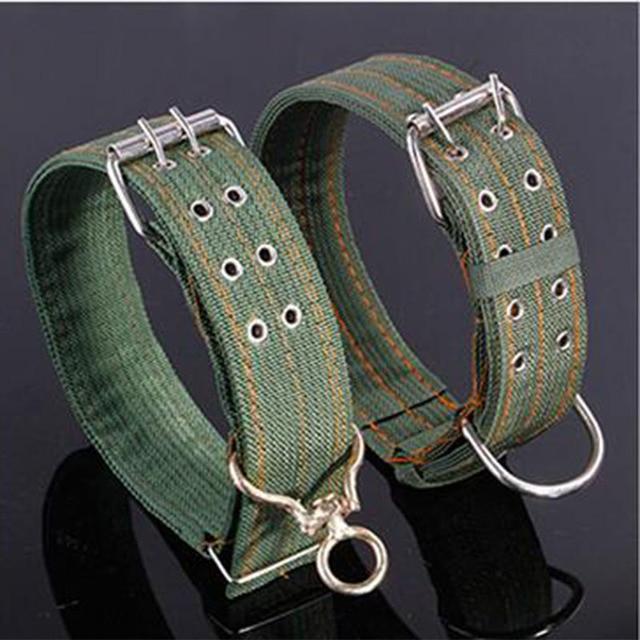 large breed dog collars