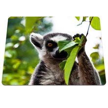 1PCs Forest lemur Background Printing Pattern Durable Gaming Silicone Optical Mouse Mat Notebook Rectangular Mouse Pad(China)
