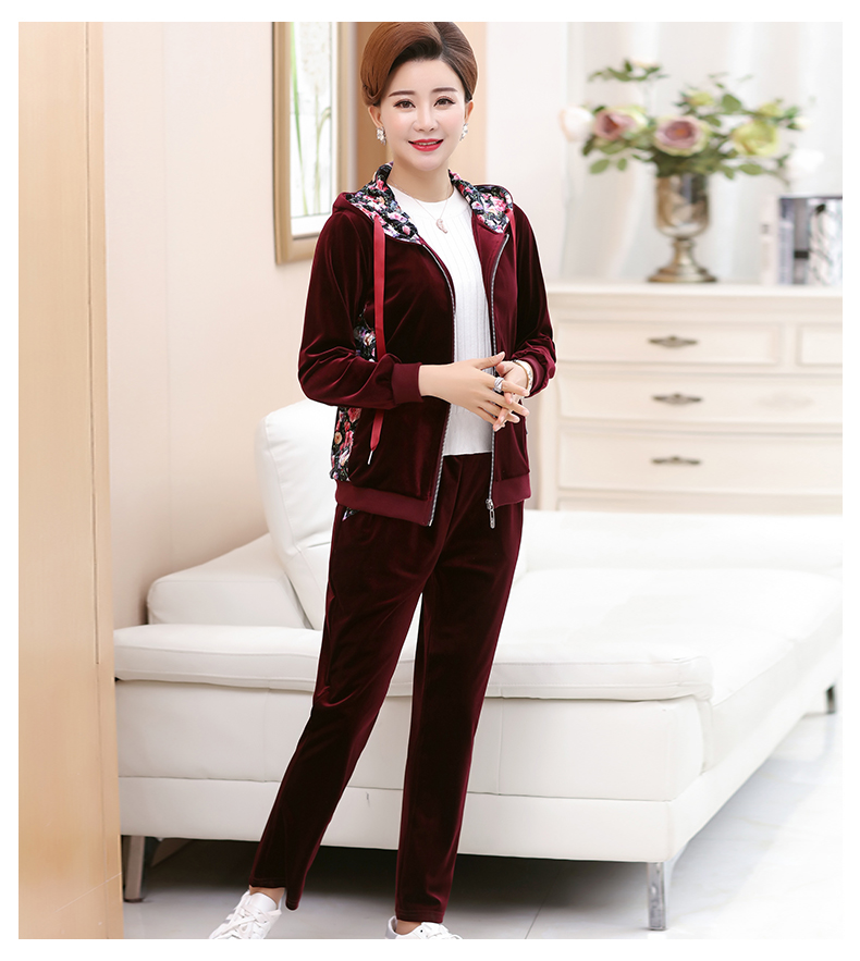 WAEOLSA Woman Casual Tracksuit Women Hooded Jacket And Trouser 2 Pieces Suit Pleuche Set Lady 2PCS Pant Set Velvet Ensemble Femme (8)