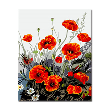 Red Poppy And White Daisy By Numbers Kits Hand painted Style On Linen Canvas Home Decorative Unique Gift DIY Flower Painting