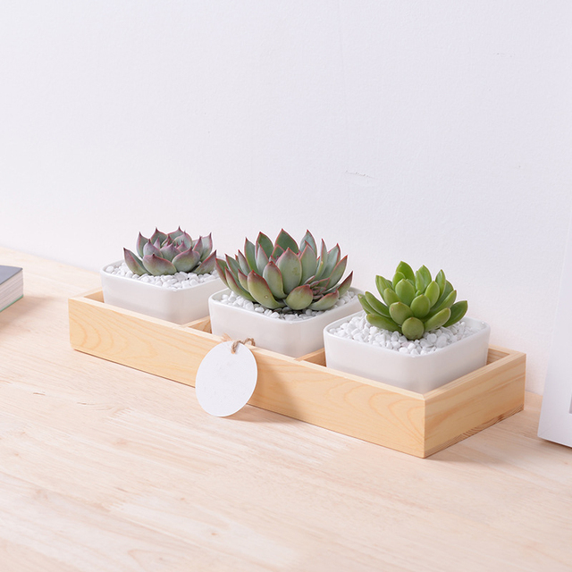1 Set Large White Square Ceramic Succulent Plant Pots With Bamboo Tray Box Desktop Home Decoration