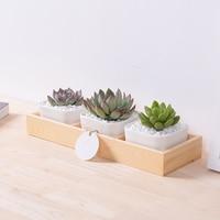 3 1 Pcs Modern Decorative Small White Square Ceramic Succulent Plant Pot 3 Flower Planters With