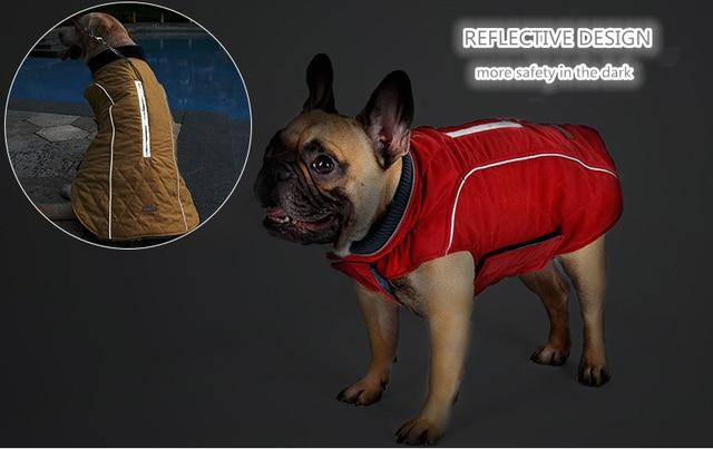Dog's Water Repellent & Reflective Jacket