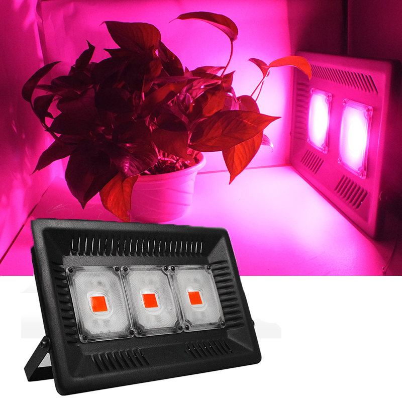 Cob Led Grow Light 1000W Phyto Lamp Waterproof IP67 Lamp For Plants Grow LED Full Spectrum Indoor Plants Seedlings Growth Lights