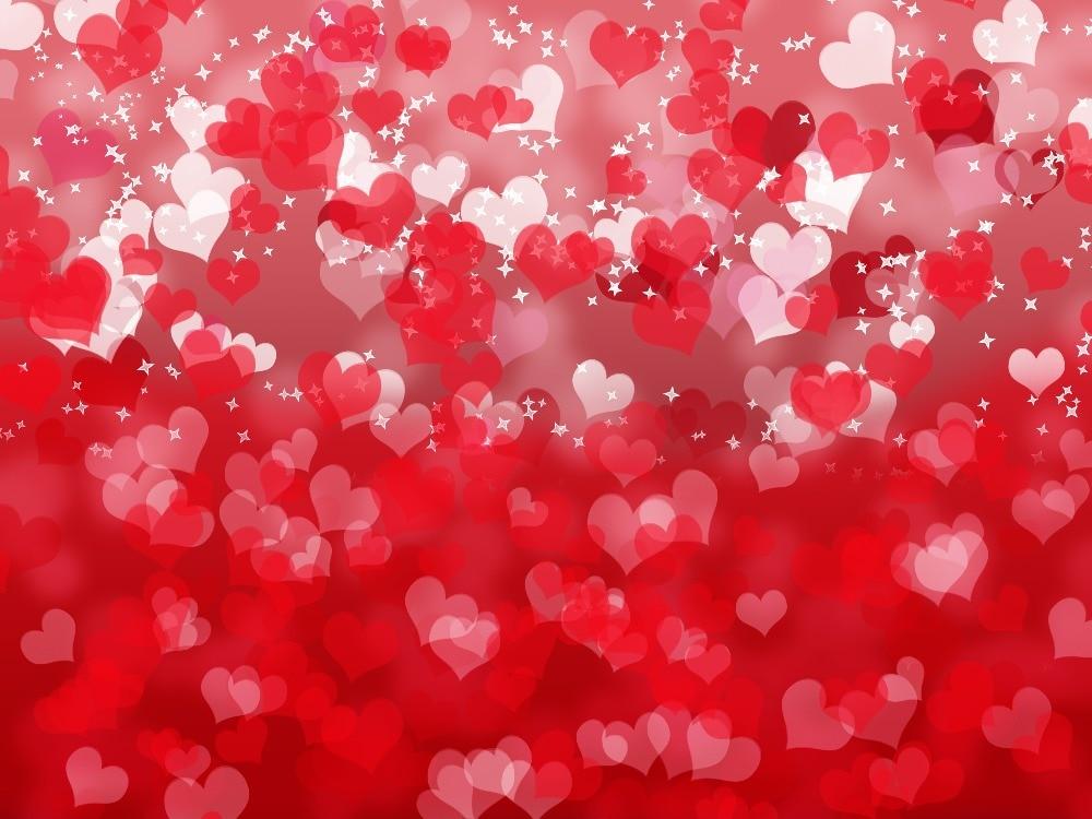 Valentine's Day Vinyl Photography Backdrops Newborns