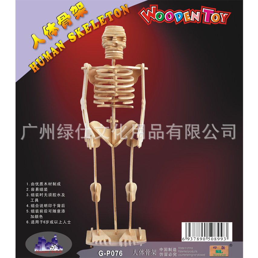 wooden human skeleton promotion-shop for promotional wooden human, Skeleton