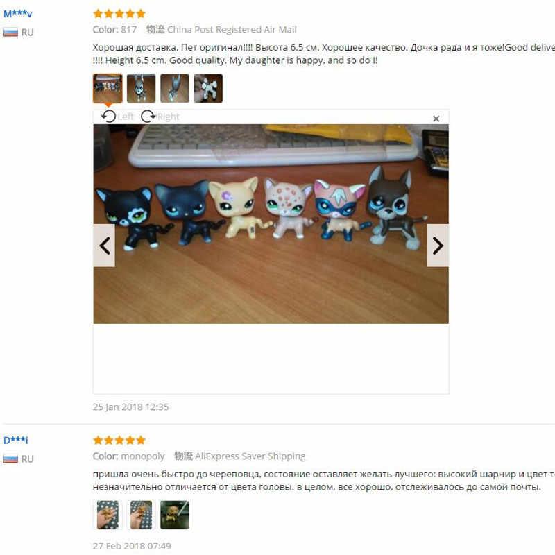 원래 희귀 lps 애완 동물 가게 장난감 무료 배송 화이트 쇼트 헤어 브라운 그레이트 데인 스탠드 액션 피겨 모델 장난감 어린이 선물