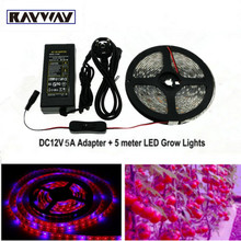 RAYWAYFull Spectrum LED Grow Lights 5050 resin strip Light  for Garden Flowering Plant Hydroponics with power adpter Switch Wire