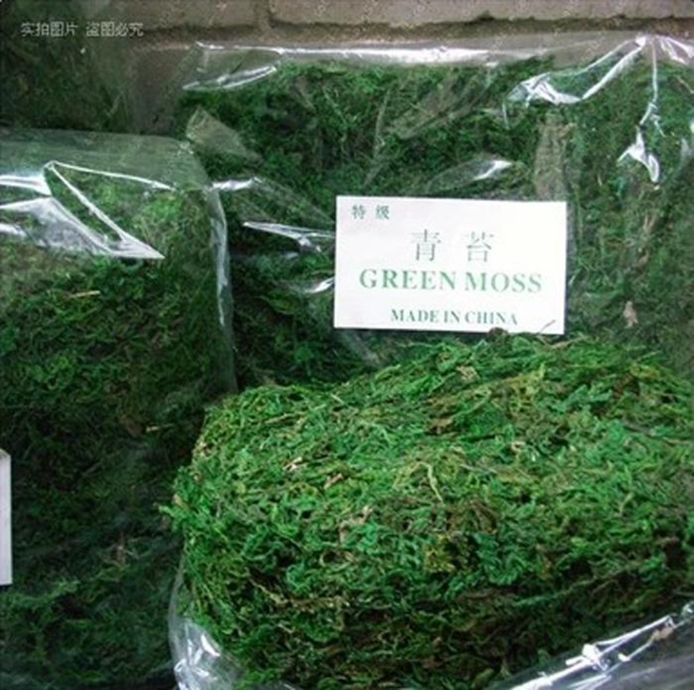 30g Bag Keep Dry Real Green Moss Decorative Plants Vase Artificial Turf Silk Flower Accessories For Flowerpot Decoration In Dried Flowers From