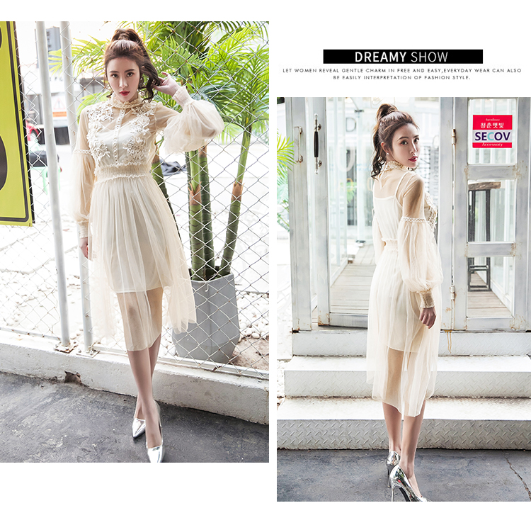 19 New Women Fashion Dress Stand Collar Lantern Sleeve Mesh Dress See-through Lace Embroidery Fairy Dress Femme Vestidos Robe 9