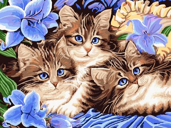 Сделай сам маслом by numbers холст кошка картина взрослых раскраски краска акриловая живопись каллиграфия по количеству ландшафта декора стены