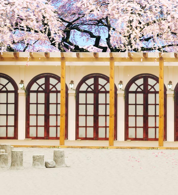 200x300cm photography scenic backdrops pink flower outdoor. Black Bedroom Furniture Sets. Home Design Ideas