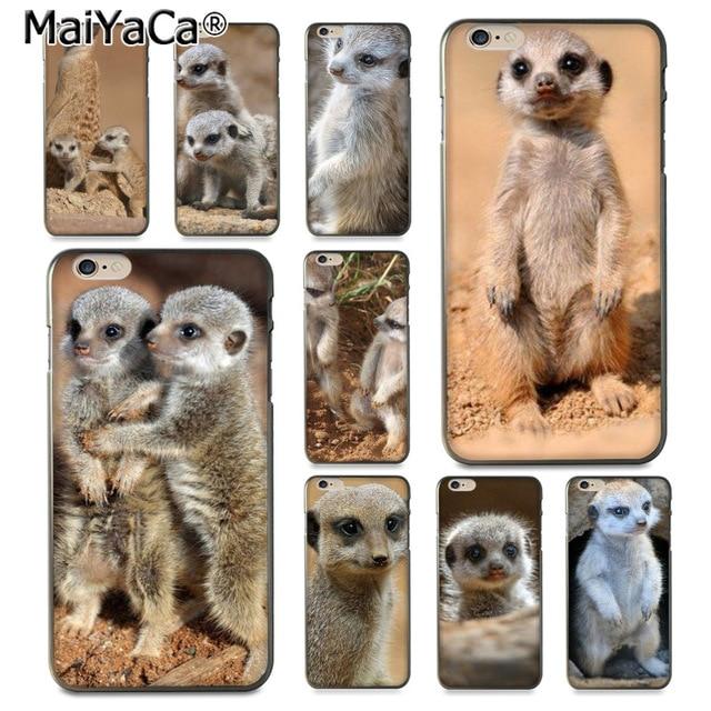4019f3097cf Compra iphone 5s case meerkat y disfruta del envío gratuito en  AliExpress.com
