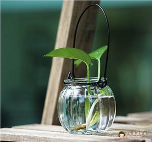 Wire Rings Glass Vase Transparent Modern Hydroponics Small