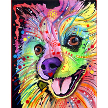 Painting By Number DIY Dropshipping 40x50 50x65cm Color Butterfly Dog Animal Canvas Room Decoration Art picture Present
