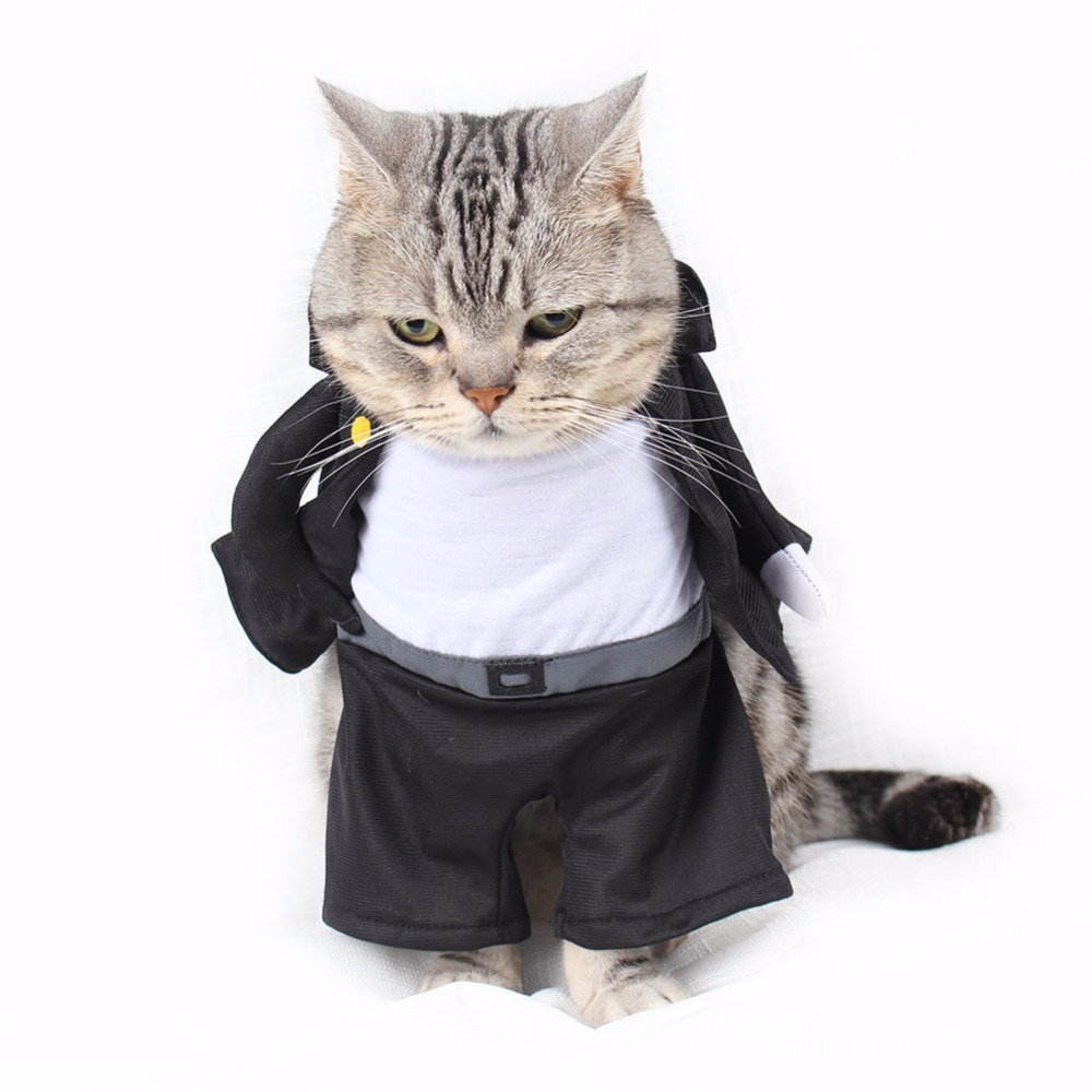 Aliexpress.com : Buy PipiFren Small Cats Clothes Cosplay Pirate Dog Costume For Pet Cosplay Cat