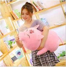 WYZHY New Year Gift Mascot Favorable Pig Pillow Plush Toy Decoration40cm
