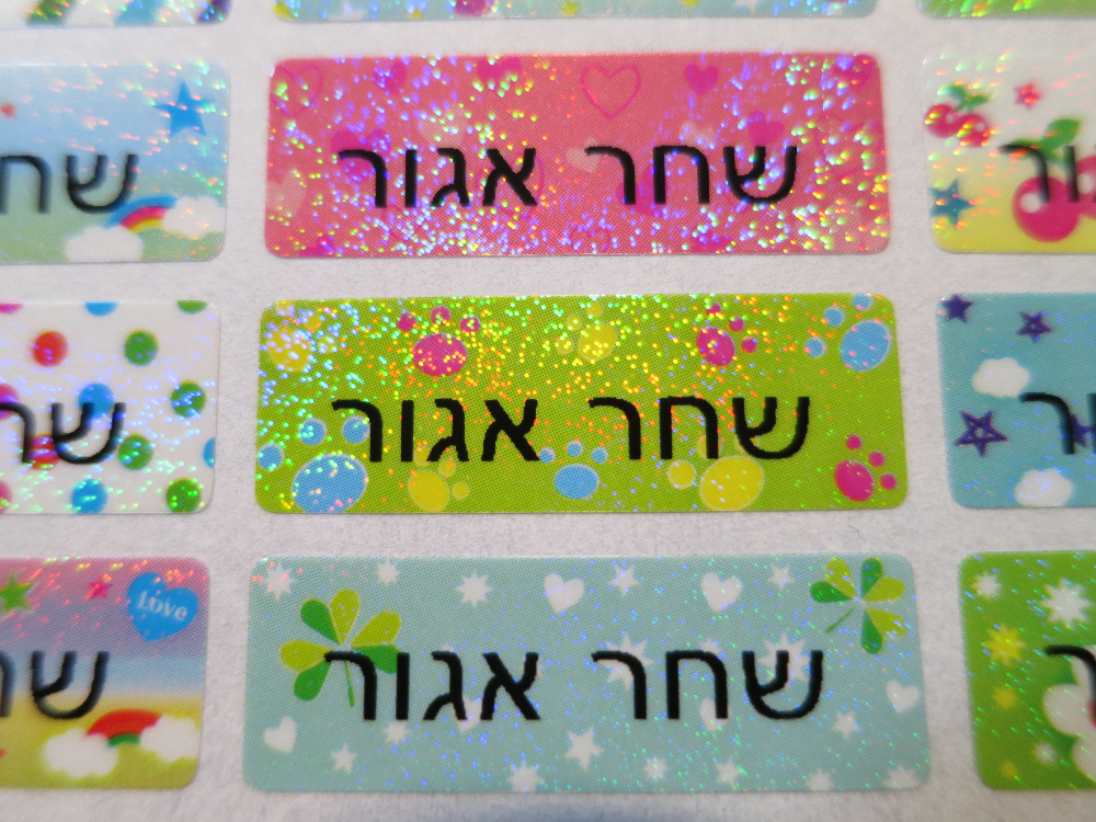 FREE SHIPPING 210 Pcs Personalized Name Stickers Water Proof School Label Decal Multi Purpose Colorful Multi Color FREE SHIPPING