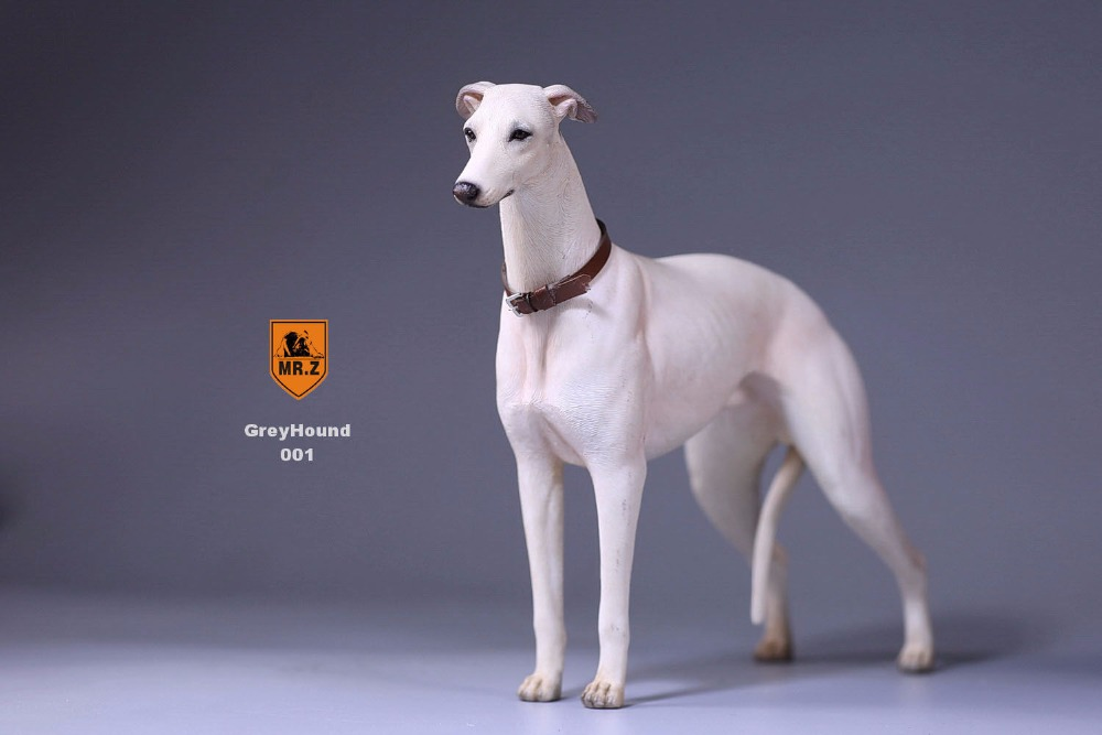 """Oyuncaklar ve Hobi Ürünleri'ten Aksiyon ve Oyuncak Figürleri'de Mr. Z 14th Bomba 1/6 Ölçekli Tazı Heykelcik Köpek Heykeli Gerçekçi Hayvan Modeli için 12 """"Action Figure Aksesuarı 001 002 003 004 005'da  Grup 2"""