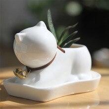 Desktop Kawaii Small Cat Котенок cub жемчужно-белый керамический горшок сочные растения горшок детский сад фарфор цветочный горшок Бонсаи