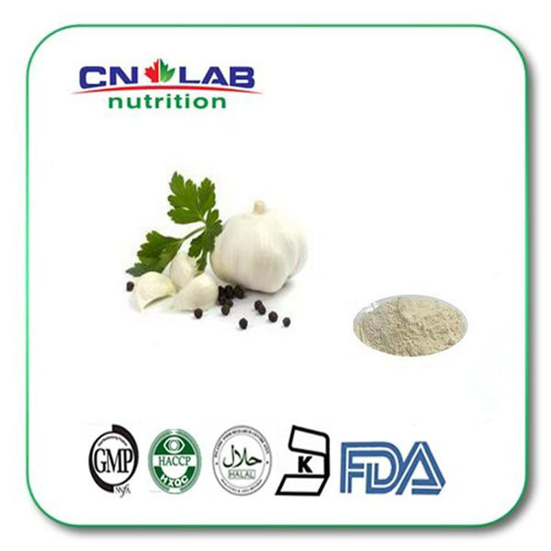 1KG 100% Natural Garlic powder, Bulk supply odorless Garlic Extract  2%  aged garlic powder extract supplements/garlic allicin glucose powder 500 grams of creatine supplements tribulus adjust taste movement branched arginine glucosamine good partner