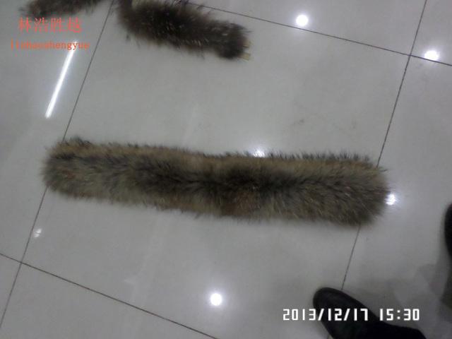 55 cm ou 50 cm de comprimento Vários modelos real gola de pele de guaxinim
