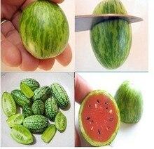 30 pcs Mini watermelon,Vegetables and fruit ,Taste like cucumbers Bonsai plants for mini garden