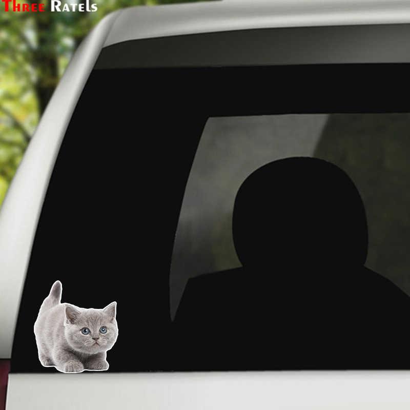 ثلاثة Ratels LCS453 #12.8x14 سنتيمتر جميل القط ملصقات السيارات مضحك ملصقات السيارات التصميم للإزالة ملصق مائي