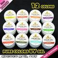 #20200 GDCOCO nail art 12 color powder color uv gel kit,supper shining uv color paint gel kit