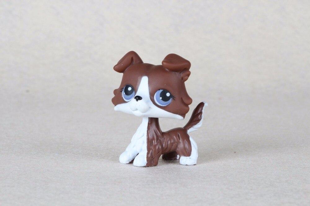 New pet Genuine Original LPS #NO Deep Brown White Collie dog Toys 12pcs set children kids toys gift mini figures toys little pet animal cat dog lps action figures