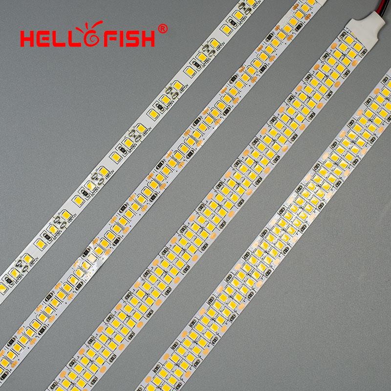 Tira CONDUZIDA luz 2835 V 24 12 600 V SMD 1200 2400 chips de LED LEVOU a fita luz 480 LEDs Branco branco quente