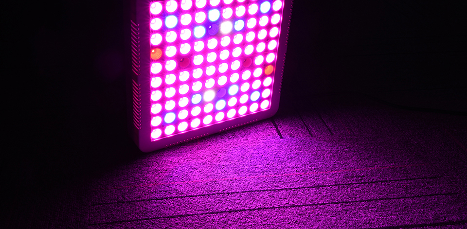 300W Full Spectrum LED Plant Grow Light Lamp For Plant Indoor Nursery Flower Fruit Veg Hydroponics System Grow Tent Fitolampy (19)