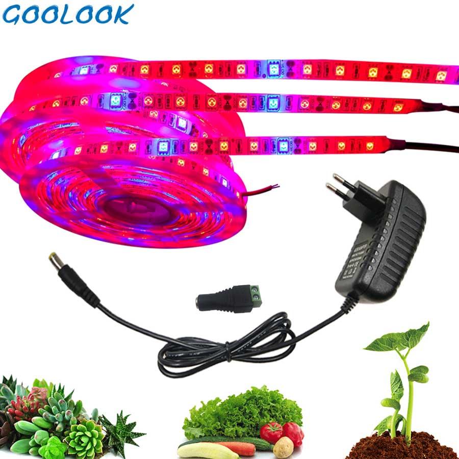 Planta crescer luzes 5m à prova dwaterproof água espectro completo led tira flor phyto lâmpada azul vermelho 4:1 para estufa hidropônico + adaptador de energia