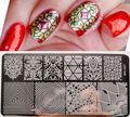 BORN PRETTY BP-L027 Illusion Theme Nail Art Stamping Template Vines Image Plate