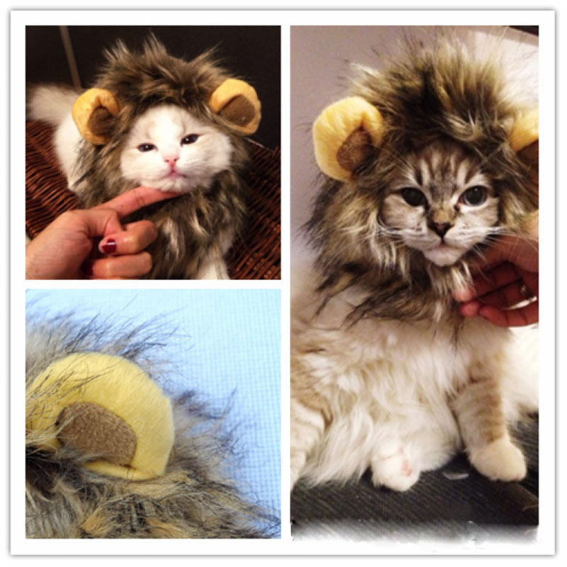 Lions mane headband